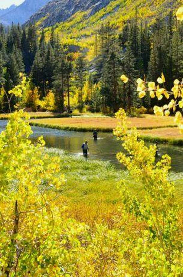 Weir Pond in Bishop Creek Canyon starts out in shades of lime green and yellow in mid-September. Photo: Jared Smith