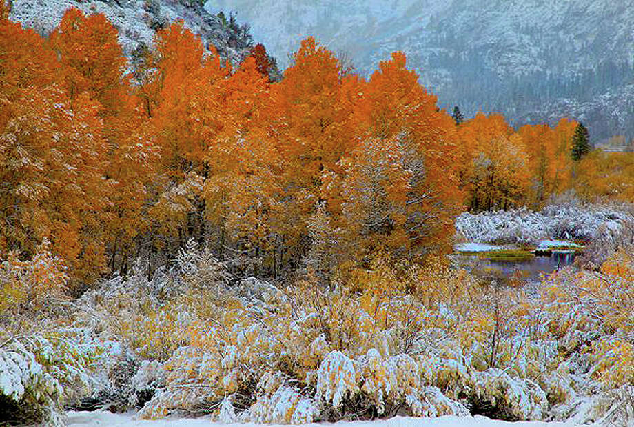 A dusting of snow makes fall colors pop along the June Lake Loop off Highway 395 in the Eastern Sierra. Photo: Nicholas Barnhart