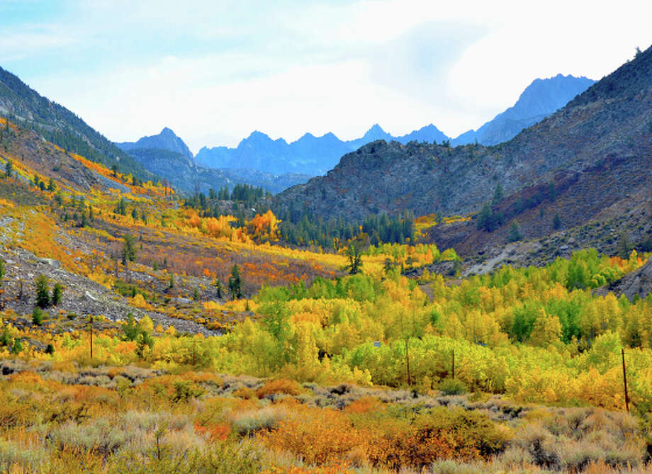Cardinal Mine, in Kings Canyon National Park, is blanketed by yellows and oranges in early October. Photo: Krisdina Karady