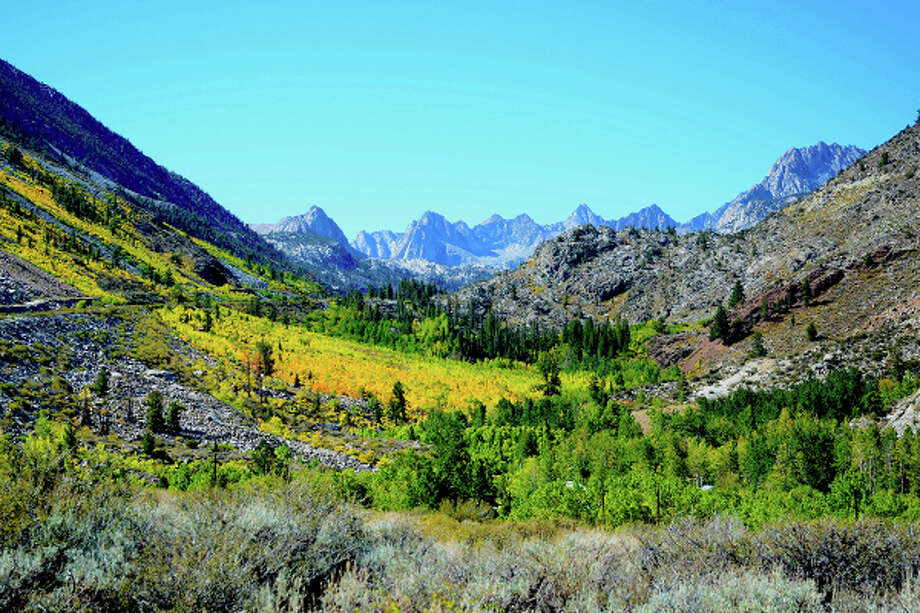 Early color at Sierra Crest with Cardinal Mine Grove and Middle Fork in Bishop Creek Canyon in the Eastern Sierra. Photo: Jared Smith
