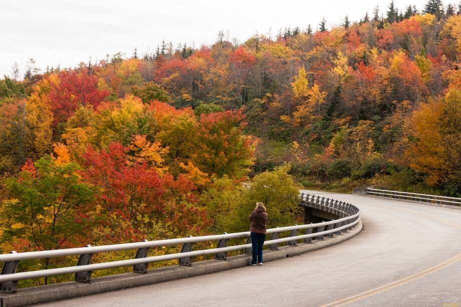 In this Oct. 17, 2013 photo provided by Grandfather Mountain a woman stops to take a photo of the fall foliage along the bridge over Green Mountain Creek on the Blue Ridge Parkway near Grandfather Mountain in Linville, N.C. While colors in the northern, higher elevations of South Carolina are still emerging, trees are exploding with color at the upper elevations in western North Carolina. Photo: Monty Combs, (AP Photo/Grandfather Mountain