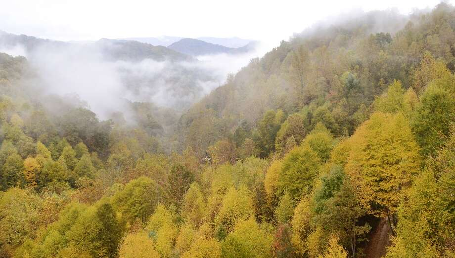 In this photo taken October 17, 2013 rain clouds hover near the tree tops near the Blue Ridge Parkway at Craggy Gardens in Barnardsville, N.C. Photo: John D. Simmons, AP Photo/Charlotte Observer