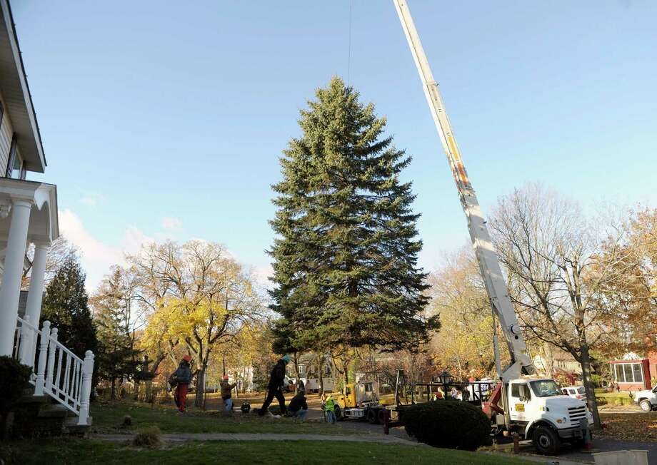 Workers from New York State OGS and DOT and workers with Donovan Tree Service out of Mechanicville, hoist a blue spruce up after it was cut at the home of Nancy and Bill Winkler on Wednesday, Nov. 13, 2013 in Schenectady, NY.  This is the second tree the Winklers have given up for the Christmas tree at the Empire State Plaza.   (Paul Buckowski / Times Union) Photo: Paul Buckowski / 00024592A
