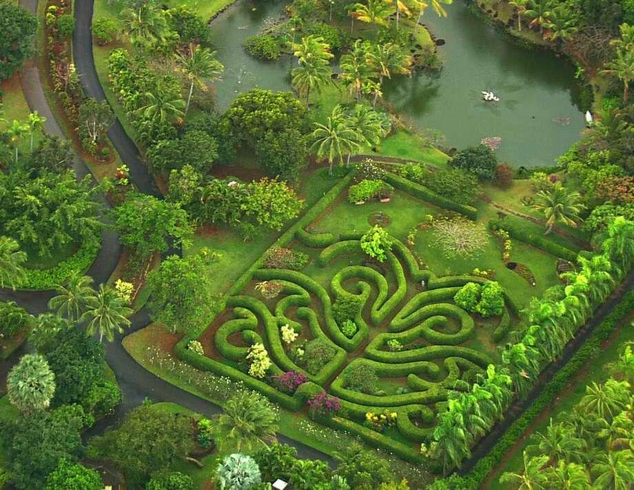 Kaua'i:In addition to a seaside venue, the nonprofit Na 'Āina Kai Botanical Gardens near Kīlauea offers several unusual wedding sites, such as the garden by Ka'ula Lagoon and the Poinciana Maze. Photo: Na 'Āina Kai Botanical Gardens