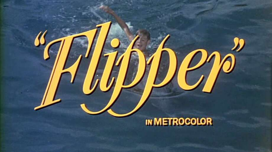 TFlipper  he 1963 film about a boy and his pet dolphin starred Chuck Connors.