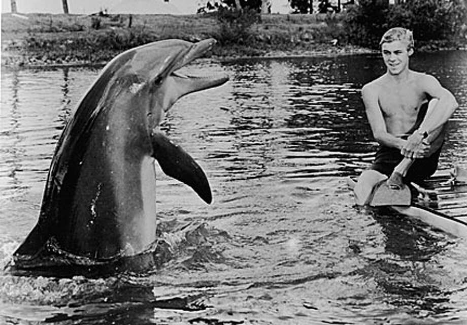 Flipper  NBC turned the film into a series in 1964. It aired for three seasons.