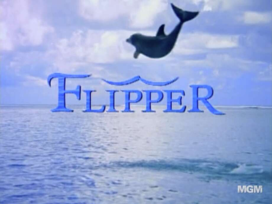 "Flipper  In 1995, ""Flipper"" was brought back to television. The first two seasons starred a young Jessica Alba in a supporting role."