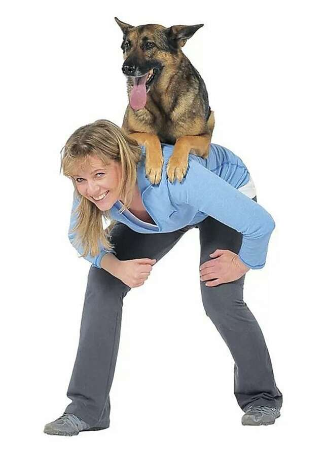 "Who's training whom? Babette Haggerty of Oakland, N.J. - dog trainer to the stars and author of ""The Best Dog Tricks on the Planet""- has Steve the German shepherd perfectly trained to let her carry him around anywhere he wants to go. Photo: Trina Kaye, Associated Press"