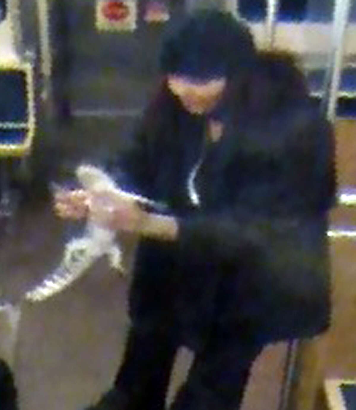 This security camera image provided by the Chicago Transit Authority on Wednesday, Nov. 13, 2013 shows a woman with a two-foot-long alligator aboard a CTA Blue Line train early in the morning of Nov. 1, 2013 in Chicago. Authorities are searching for the woman, who they believe discarded the reptile at O'Hare International Airport. The two-foot-long alligator was captured hours later after a maintenance worker found it under an escalator in a baggage claim area.