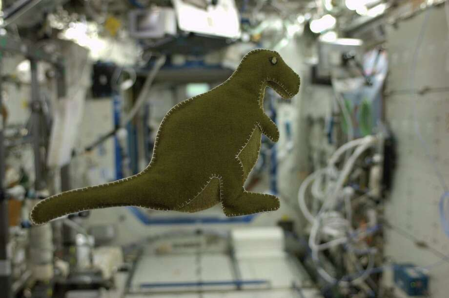 NASA astronaut Karen Nyberg made this stuffed toy dinosaur, seen floating on the International Space Station, for her son Jack.   She made the toy with materials found on the station. Photo: NASA / © 2013 NASA