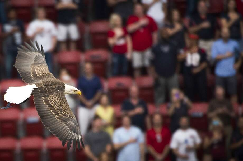 Challenger, a free-flying bald eagle, soars above the crowd during the national anthem. Photo: Smiley N. Pool, Houston Chronicle