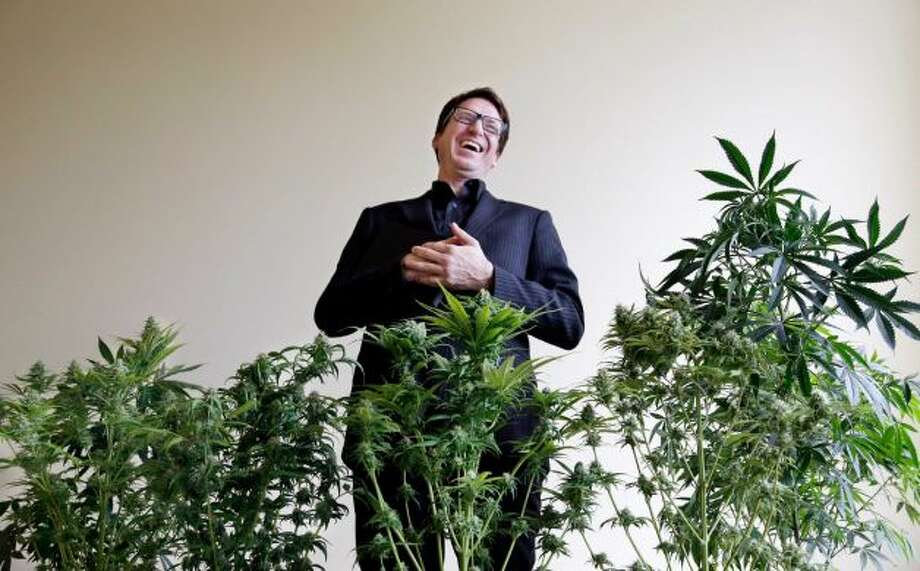 "Daniel Curylo laughs while posing with some of the marijuana plants that he uses for marketing purposes in Seattle on Wednesday, Nov. 13, 2013.   If legal pot is the Green Rush, Curylo has some unique credentials: He's been an actual prospector. He helped put himself through college working for a company that flew him into northern British Columbia and the Yukon with a map, a compass and a heavy backpack. He'd pan for gold and take soil samples.   Another source of income in those days?   Growing and selling marijuana with a few other political science majors. A former techie and ex-house flipper, Curylo, 41, says his background in ""business development and taking risks"" is perfect for the legal pot world. He has invested $400,000 so far. His goal? A cannabis business park northwest of Olympia that would feature his growing operation, Cascade Crops, as well as retail stores run by his mother, father and aunt. Photo: Elaine Thompson, Associated Press"