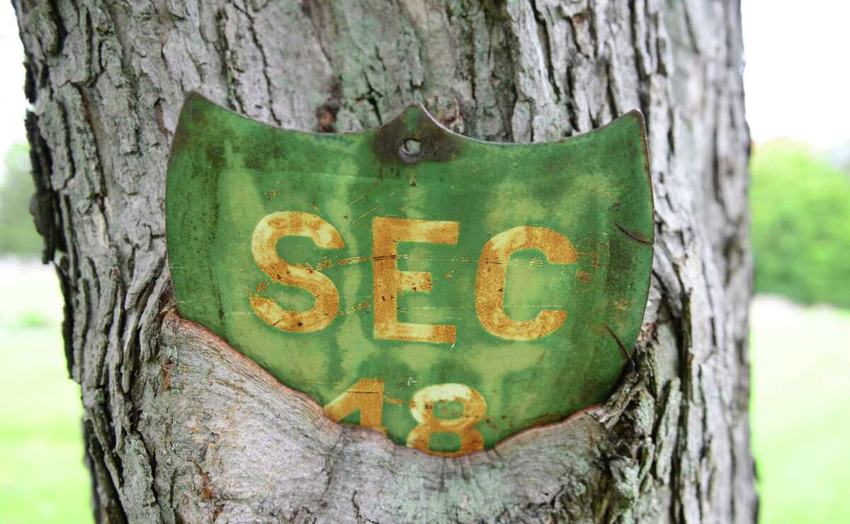 The marker for section 48 at Albany Rural Cemetery is merged into a tree trunk.