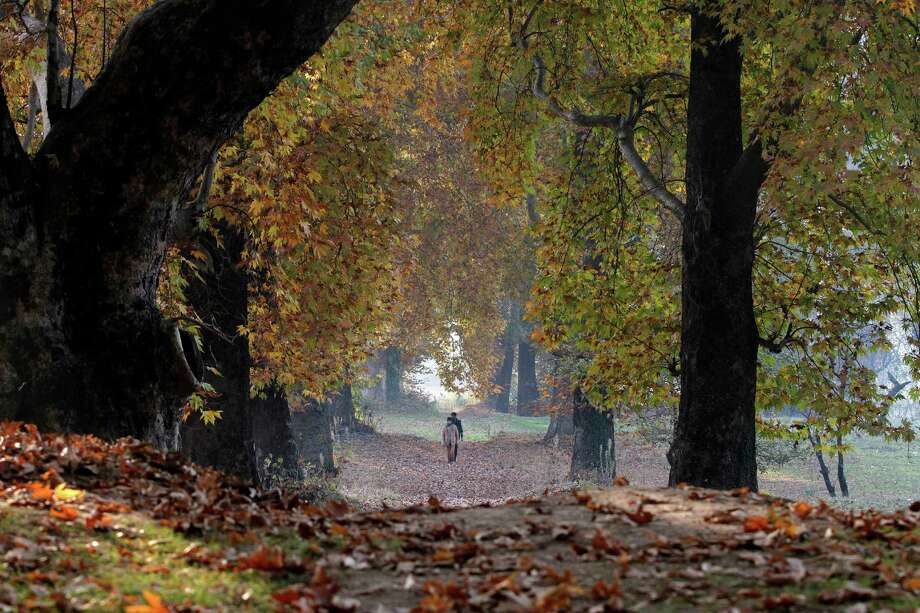 A/W- autumn/winter (denoting or relating to fashion designed for the autumn and winter seasons of a particular year. Photo: Mukhtar Khan, Associated Press / AP