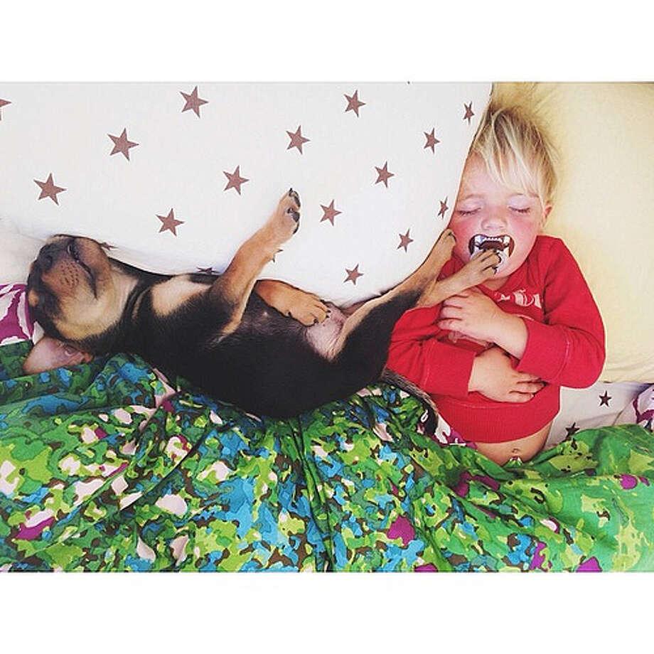 Theo and Beau Photo: