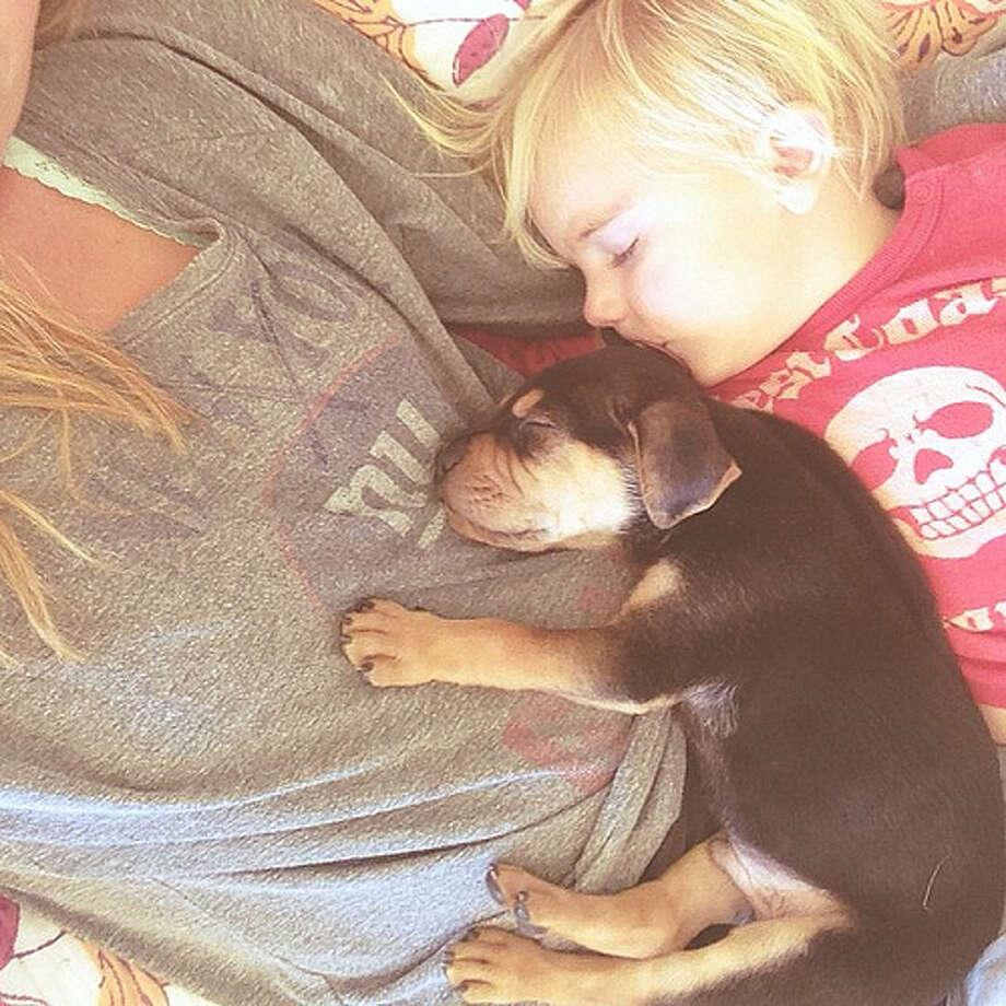 Theo, Beau and Mom Photo: