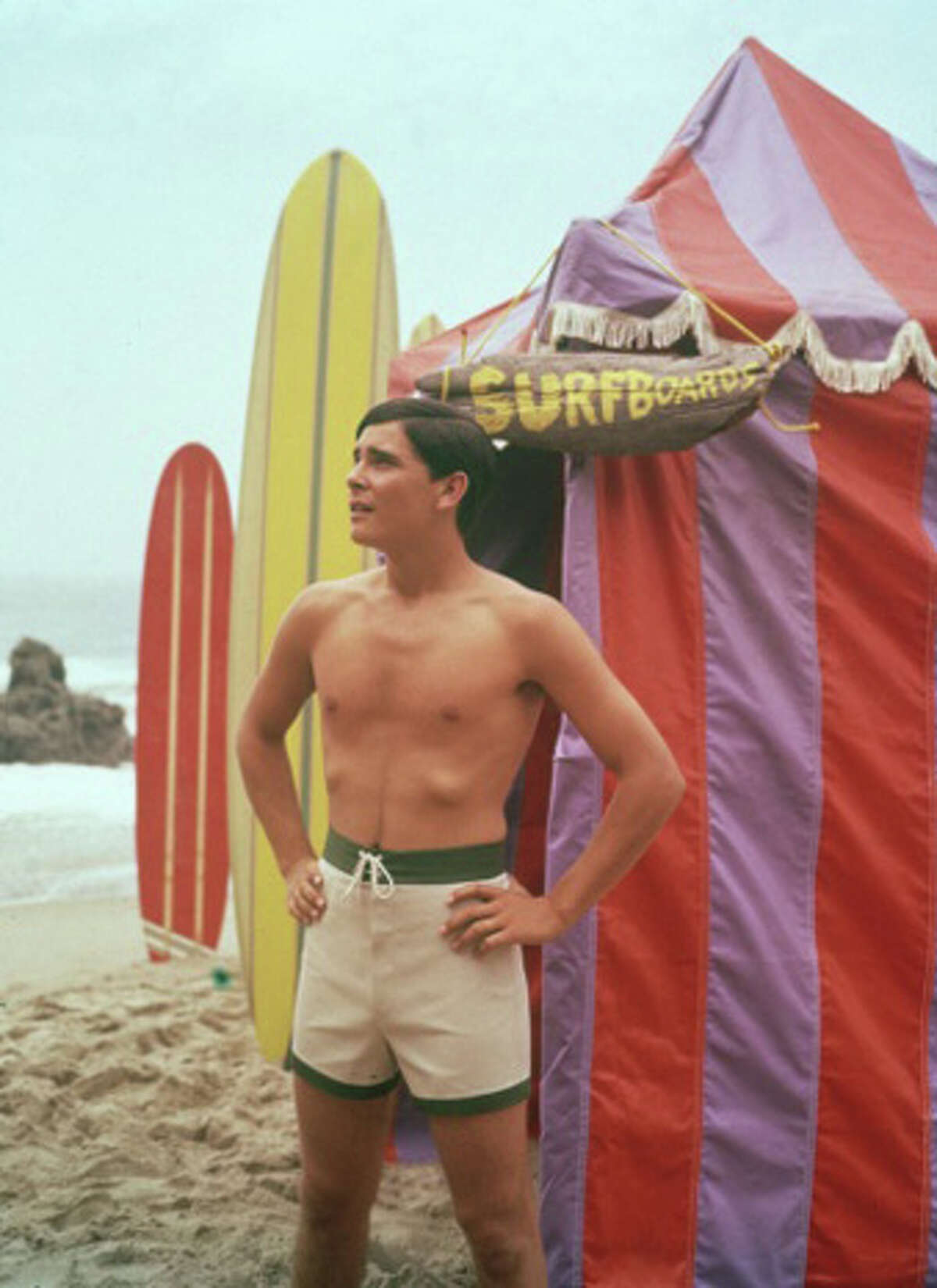 Surfing was all the rage with the Beach Boys at the top of the charts.
