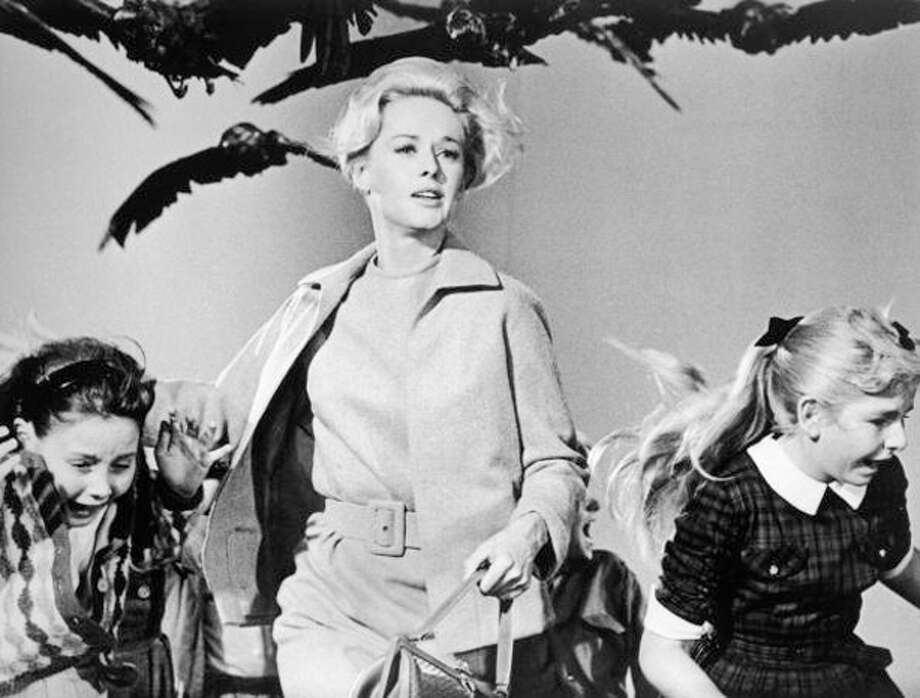 "Alfred Hitchcock's ""The Birds"" debuts in theaters. Photo: Universal Studios, Getty Images / Moviepix"
