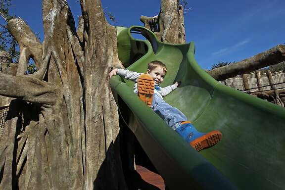 Cooper Mayer, 3 of San Francisco, slides down the Banyan Tree climbing structure, as children get a sneak preview of the newly finished Elinor Friend Playground at the San Francisco Zoo, on Thursday Nov. 21, 2013 in  San Francisco, Ca. After years of fundraising, planning and design and one year of construction, the Elinor Friend Playground is ready for its grand re-opening on Saturday November 23, 2013.