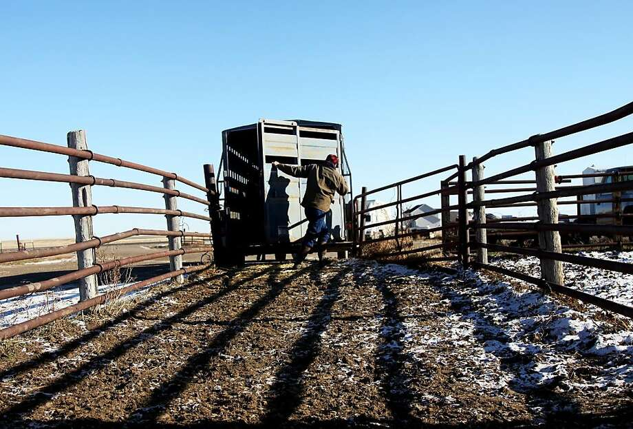 77 percent of Montana residents say the state is the best or one of the best places to live. You may remember Montana is also the state residents are the least likely to want to leave. Photo: Lindsay Brown, Associated Press