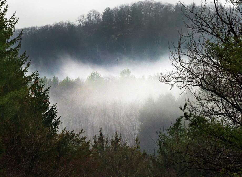 Fog seems to cling to the trees Friday Nov. 22, 2013, in East Nassau, NY.  (John Carl D'Annibale / Times Union) Photo: John Carl D'Annibale