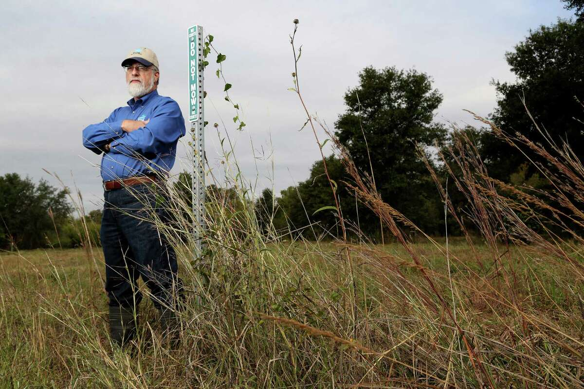 """Glenn Laird, director of the flood-control district's environmental services division, stands next to a sign that reads """"Do Not Mow"""" in the prairie near the intersection of Wildwood and Warm Springs, Wednesday, Nov. 20, 2013, in Houston. Story is about the efforts taken to protect an endangered weed called the Texas Prairie Dawn. ( Karen Warren / Houston Chronicle )"""