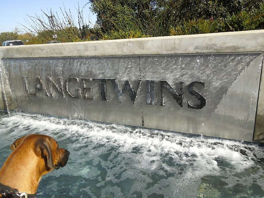 LangeTwins Winery in Lodi, which recently opened the Press Room, its first public tasting space, is also dog friendly. Photo: Carey Sweet