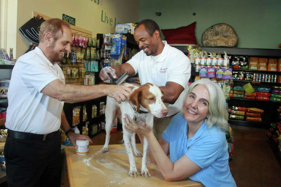 Pete Pitre, left, and Rod Thomas, co-owners of Fresh and Fluffy, help bathe Brynna, a Brittany spaniel, with their natural dry dog shampoo, with help from Nadine Joli-Coeur, a co-owner of Natural Pawz, a pet store chain that carries the new brand. Photo: Gary Fountain, Freelance / Copyright 2013 Gary Fountain.