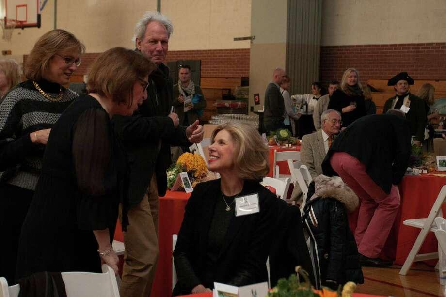 Christine Baranski at the Housatonic Valley Association Benefit Auction in Washington Depot, Conn., on Nov. 24, 2013. Photo: Stephanie Vogt / Hearst Connecticut Media Group