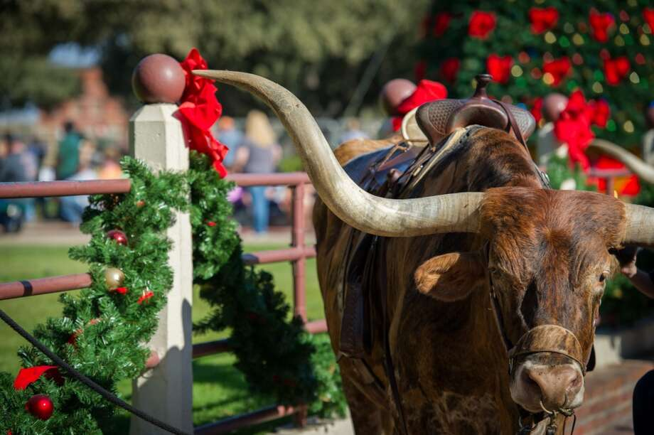 The historic Fort Worth Stockyards host a holiday parade complete with horses and longhorns. Photo: Courtesy Photo, Brian Hutson/Stockyards Station