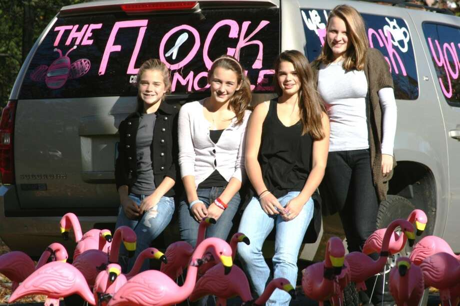 "Ludlowe High students have been organizing ""flamingo flocks"" to raise money for Bridgeport Hospital's Norma F. Pfriem Breast Care Center for several years. These photos are from their participations in previous years.This year, the group raised $4, 000. /contributed photos"