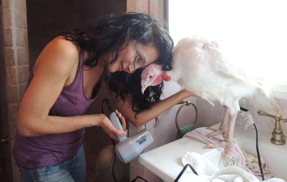 Anne Turkey and Karen Dawn share a moment. Is it just me or do the turkeys actually look pretty darn grateful? Photo: Matt Washil, Courtesy Karen Dawn