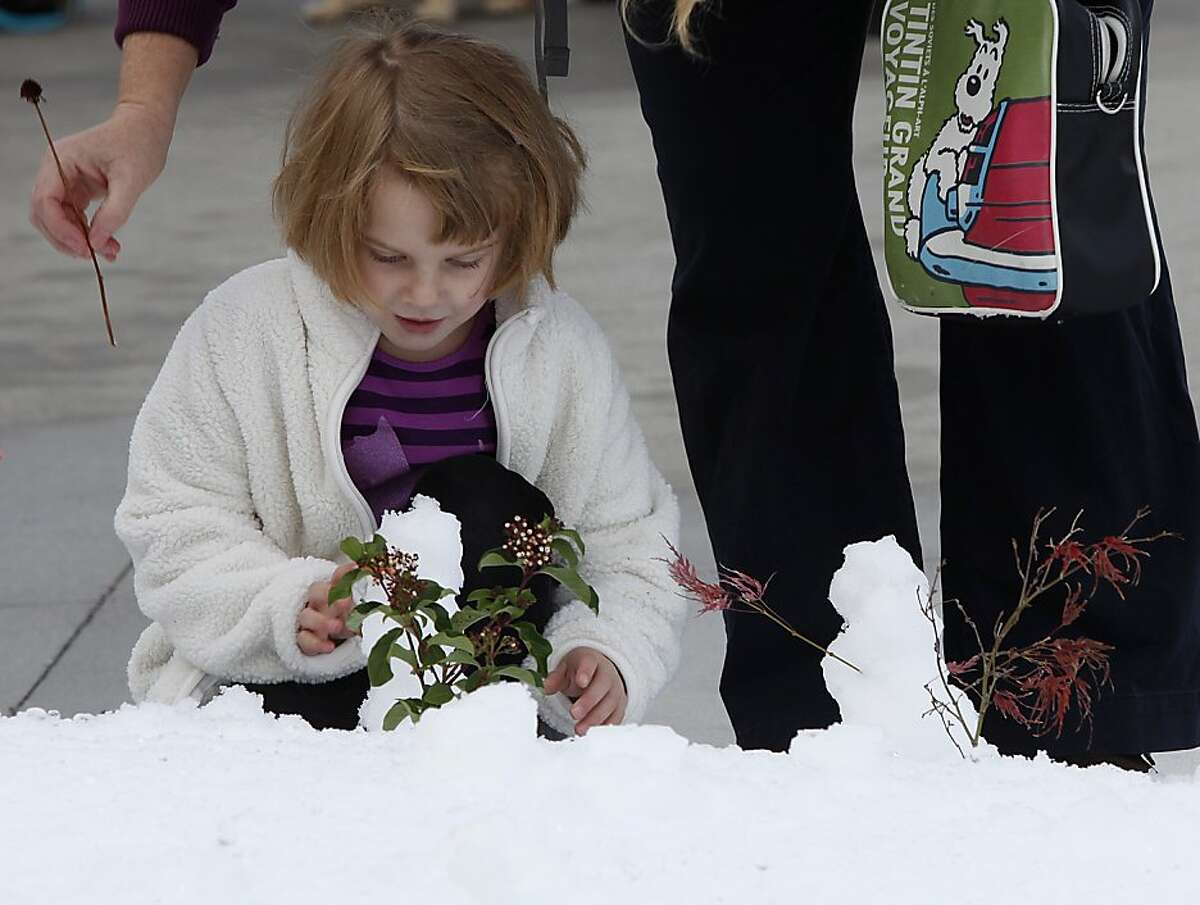 Sofia Tibbitts, 4 years old, makes a snowman in front of the California Academy of Sciences in San Francisco, Calif., on Tuesday, November 26, 2013. Snow was made this morning in front of the academy to introduce the academy's annual 'Tis the Season for Science' exhibit which opens to the public on November 27.