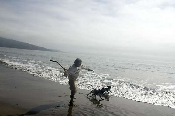 A man throws a stick for his dog on the beach in Bolinas.