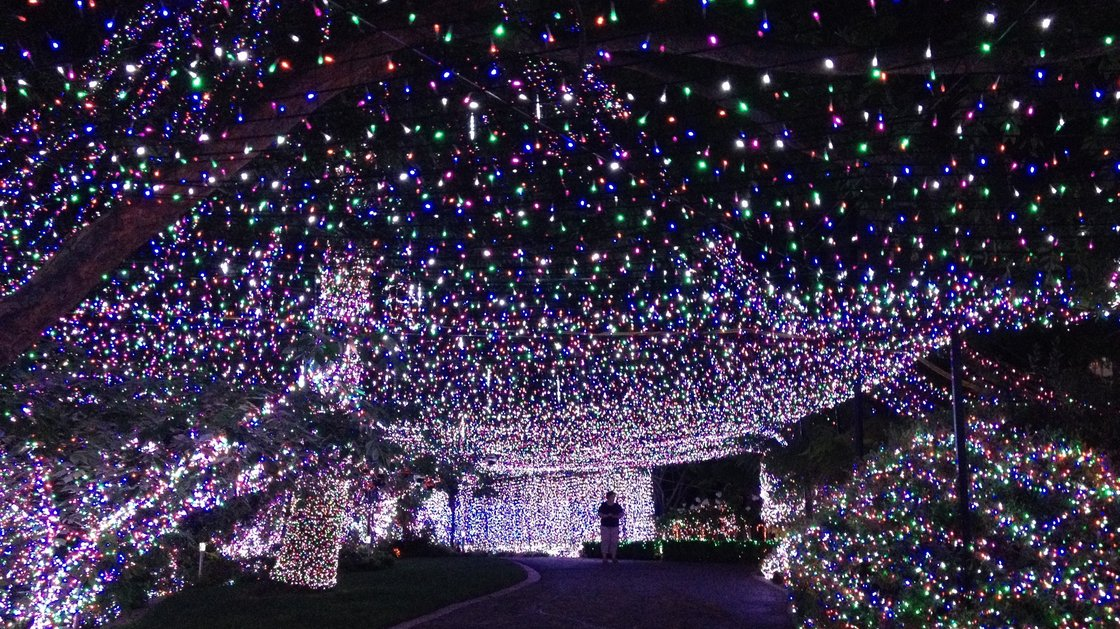 - Family Sets World Record For Most Christmas Lights - Houston Chronicle