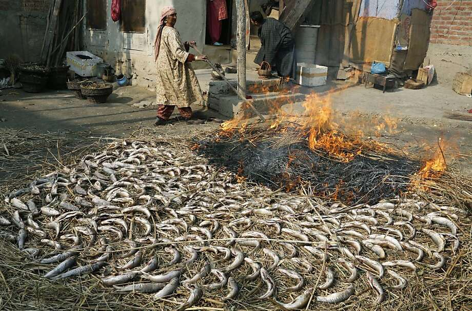 Fish fry:Roasting fish in Srinagar, India, requires a bushel of hay, a big backyard and lax municipal fire regulations. 