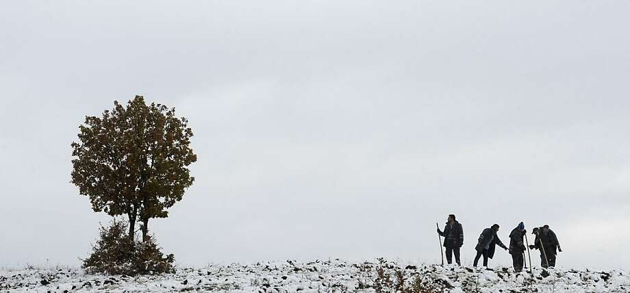 Next year let's not wait until the ground's frozen: Workers plant trees in the snow east of 