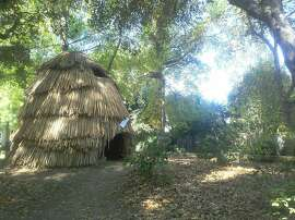 A Miwok kotcha on the grounds of the Museum of the American Indian in Novato.