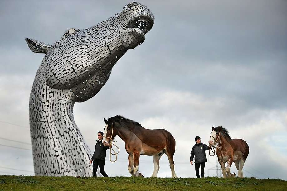 The biggest thing in horse heads since 'The Godfather':Horsewomen lead their Clydesdales past one of the newly completed Kelpies sculptures by Andy Scott, the world's largest pair of equine sculptures and one of the UK's tallest pieces of public art. The horse's nose is about 100 feet above the ground. Photo: Jeff J Mitchell, Getty Images