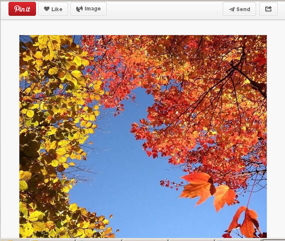 Sometimes the fall color is so gorgeous, you just have to stop a moment to take it in. Photo: Screengrab From Pinterest.com