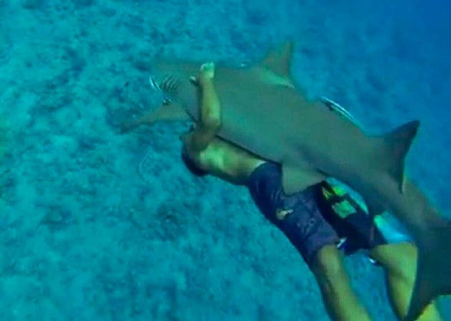 While some conservationists ride sharks, it's not a recommended activity.