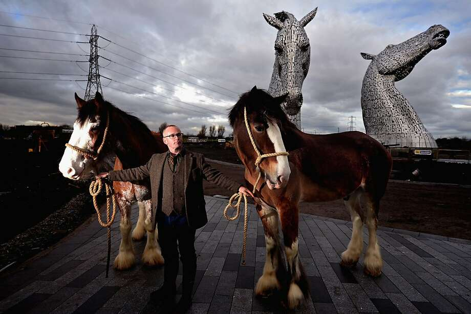 Andy Scott stands with Clydesdale Horses Duke and Baron during a topping out ceremony at The Kelpies on November 27, 2013 in Falkirk, Scotland. Construction work has been completed on Andy Scott's Kelpies, the world's largest pair of equine sculptures and one of the UKs tallest pieces of public art. The 30 metre tall Kelpies have cost £5million to complete and play a central role in the £43 million, 350-hectare Helix land transformational project between Falkirk and Grangemouth. Photo: Jeff J Mitchell, Getty Images