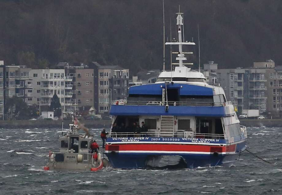 Police storm a Victoria Clipper in Puget Sound and took a suspect into custody Sunday, 2013-12-01. (JOSHUA TRUJILLO / SEATTLEPI.COM) / seattlepi.com