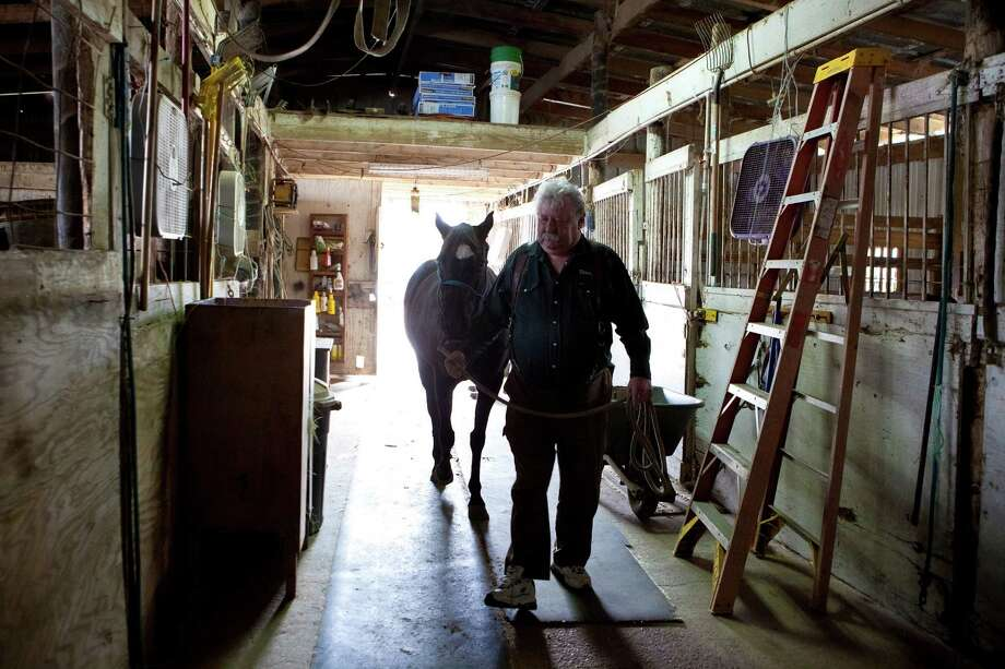 "Steven Long, editor of Horseback Magazine, says it's ""highly doubtful' illegal tracks have veterinarians. Photo: Marie D. De Jeséºs, Staff / © 2013 Houston Chronicle"