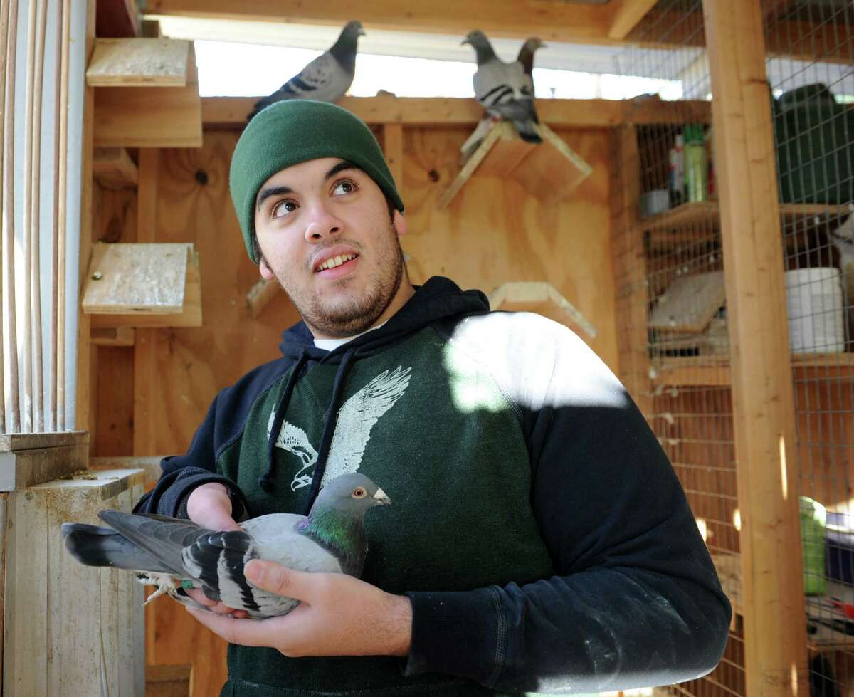 Shokri Enbawe who grew up in Palestine, holds one of his pigeons in a pigeon coop at his home on Friday, Nov. 29, 2013 in Albany, N.Y. Enbawe uses the birds for pigeon racing. (Lori Van Buren / Times Union) .
