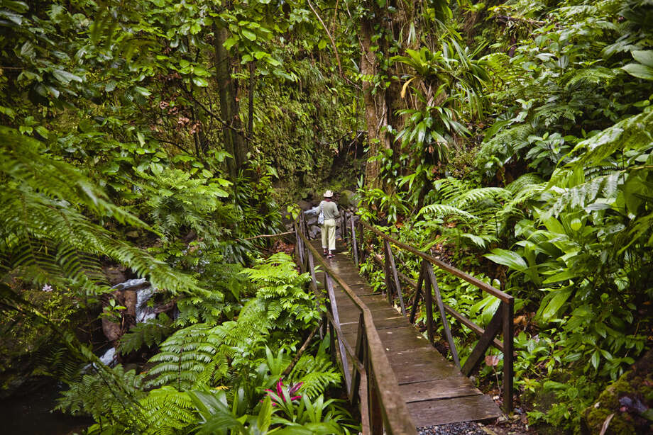 "In Dominica, ""native species and forests are relatively unspoiled in comparison to neighboring islands,"" according to the report. It also has expanded solar power use around the island. Photo: David Madison, Getty Images / (c) David Madison"