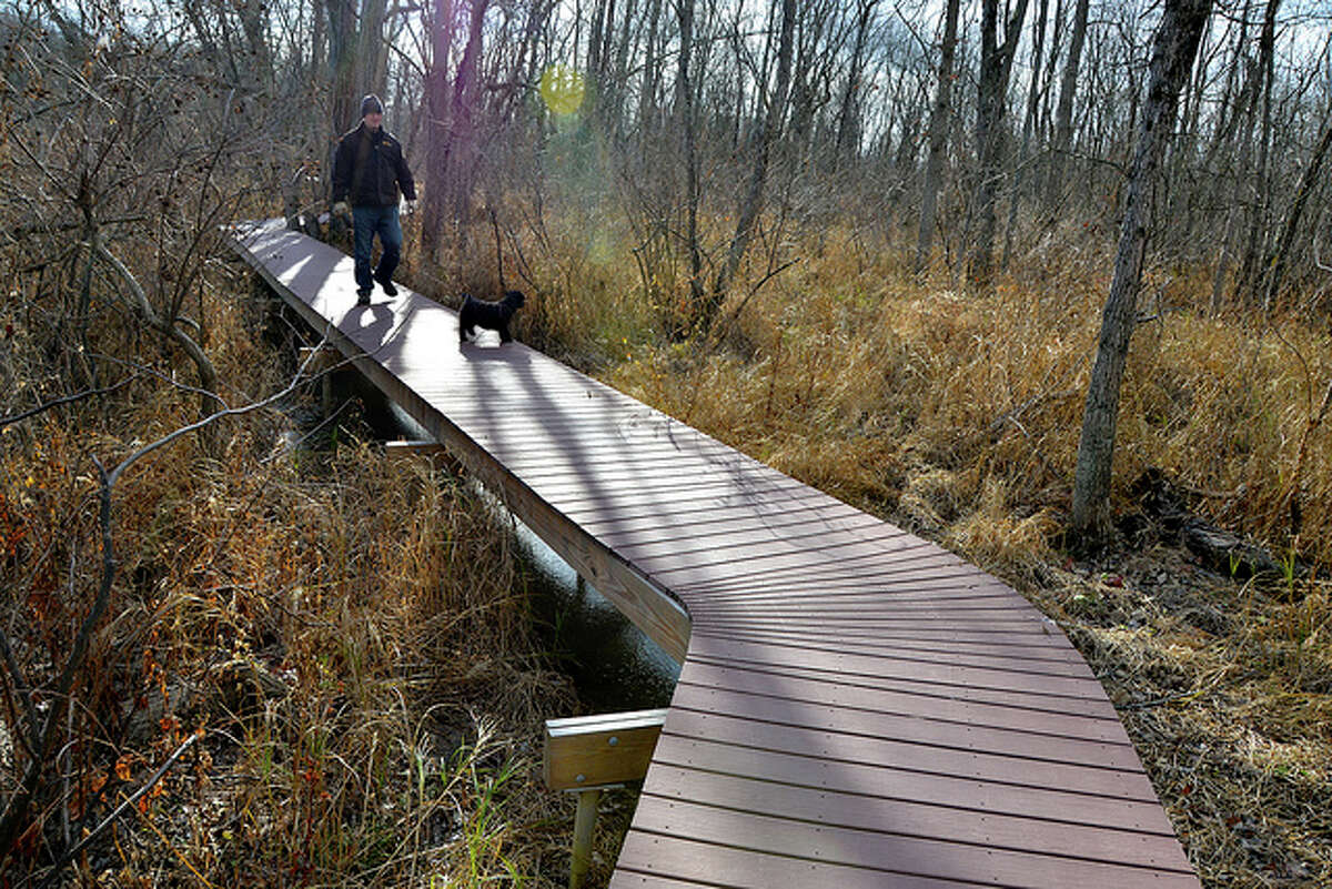 The half-mile boardwalk at the Lewis A. Swyer Preserve in Stuyvesant, NY is a good place to take a scenic walk through a rare freshwater tidal swamp and view the Hudson.The best part is the boardwalk makes the hike accessible for anyone. Read more about Sonja's hike.