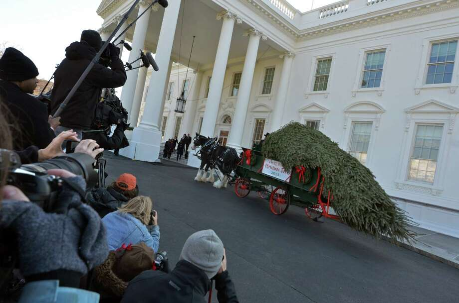 Press photographers take pictures of First Lady Michelle Obama arriving with daughters Malia and Sasha, and their two dogs Bo and Sunny as they welcome the Official White House Christmas Tree to the White House November 29, 2013 in Washington,DC. This years White House Christmas Tree, which will be on display in the Blue Room, is an 18.5-foot Douglas Fir grown by Chris Botek, a second generation Christmas Tree Farmer from Crystal Spring Tree Farm in Lehighton, Pennsylvania.  AFP PHOTO / Eva HambachEVA HAMBACH/AFP/Getty Images Photo: EVA HAMBACH, Staff / AFP
