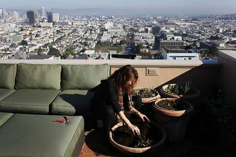 Bonnie Fisher digs nuts cached by squirrels out of a pot on her terrace at her home across from Buena Vista Park on November 30, 2013 in San Francisco, Calif.