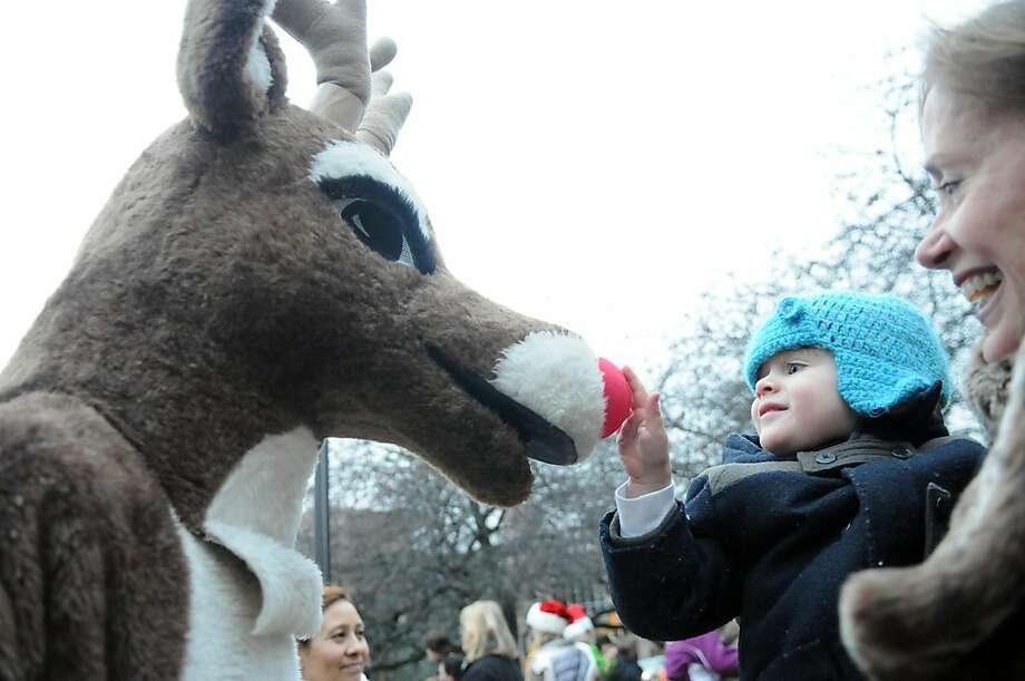 Would he even say it glows? Two-year-old Conrad Gillis tests the validity of Rudolph's bioluminescent nose at Parks and Recreation's annual tree-lighting ceremony at Town Hall in Greenwich, Conn. Photo: Keelin Daly, Stamford Advocate